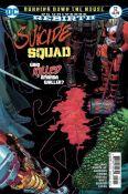 Suicide Squad, Vol. 4 #12A