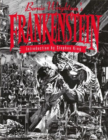 does frankenstein s retrospective narrative chapters 1 5 Chapter 1 chapter 2 structure and narrative the structure of frankenstein is very largely determined by the way in which the narrative is organised.